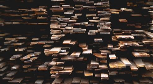 Holz-ist-das-neue-Gold!