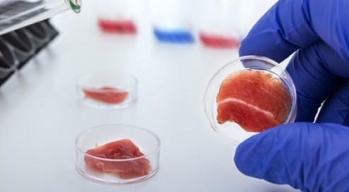 Fleisch-aus-der-Petrischale